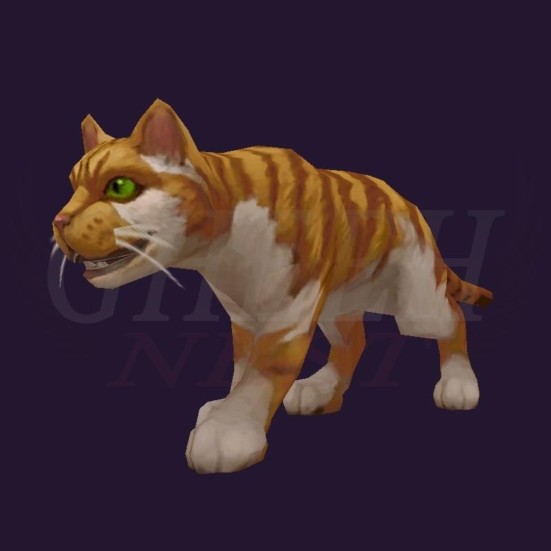 WoW Haustier kaufen: Cornish Rex - World of Warcraft Pet