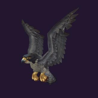 WoW Haustier kaufen: Falke von Korlach - World of Warcraft Pet