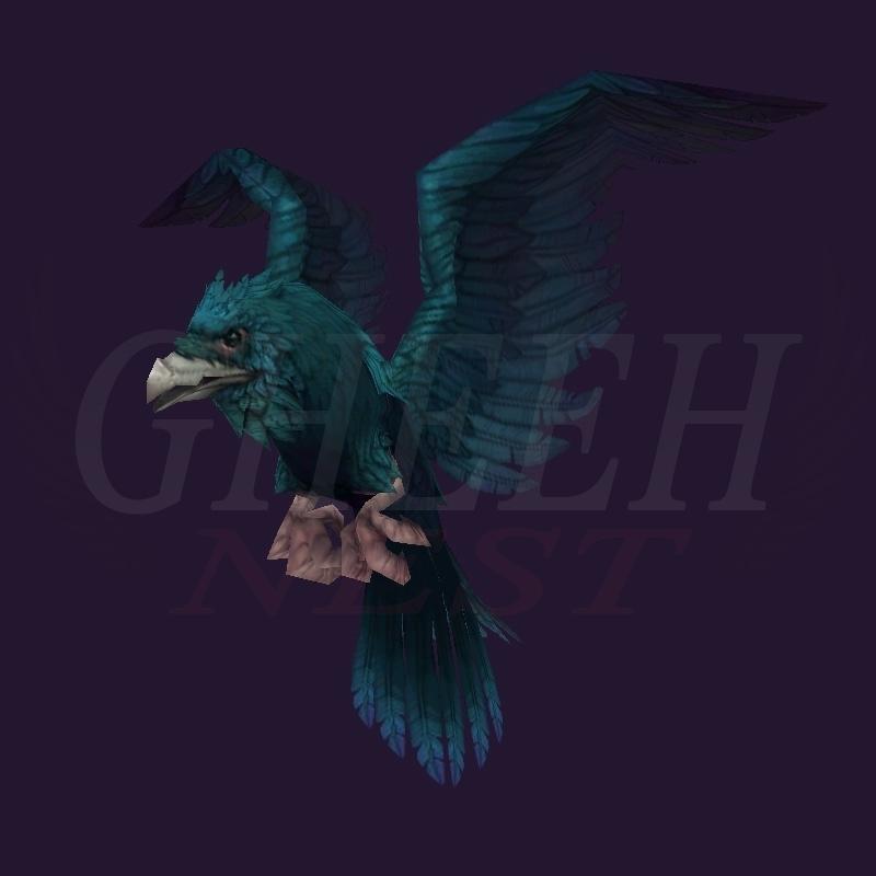 WoW Haustier kaufen: Gilnearischer Rabe (SS-Züchtung) - World of Warcraft Pet