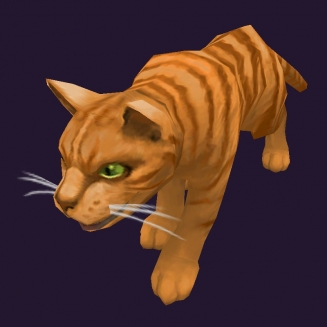 WoW Haustier kaufen: Orangefarbene Tigerkatze - World of Warcraft Pet