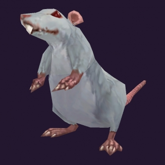 WoW Haustier kaufen: Schnurri die Ratte - World of Warcraft Pet