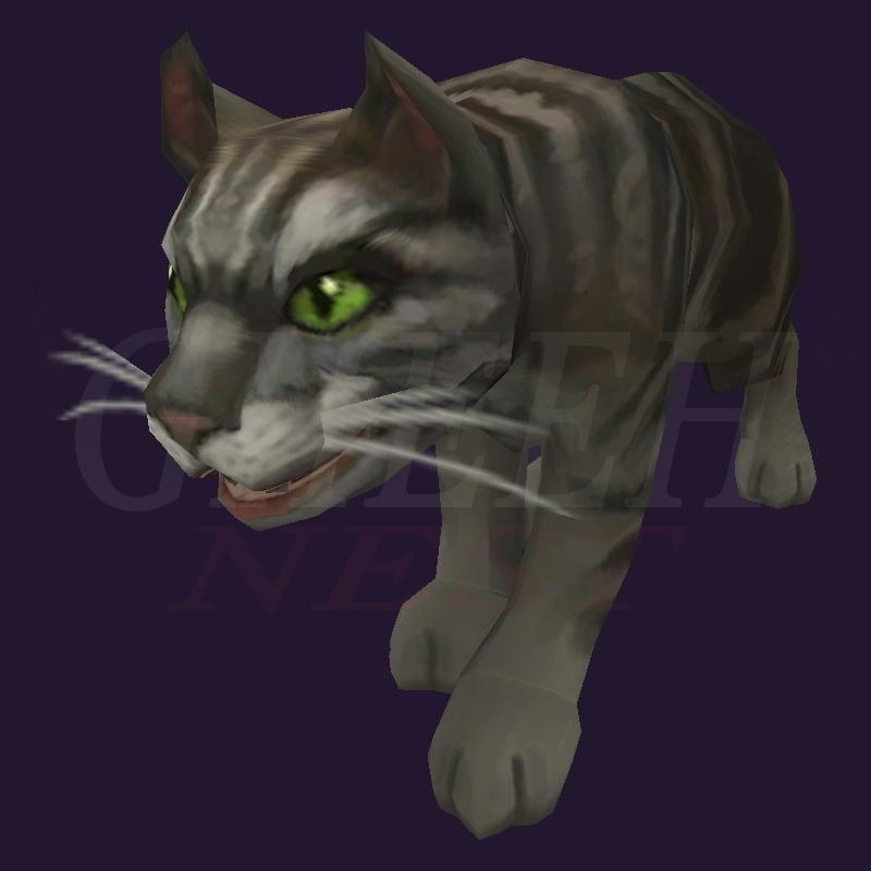 WoW Haustier kaufen: Schwarze Tigerkatze - World of Warcraft Pet
