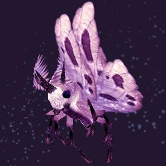 WoW Haustier kaufen: Staubige Sporenschwinge - World of Warcraft Pet