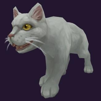 WoW Haustier kaufen: Weißes Kätzchen - World of Warcraft Pet
