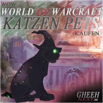 Katzen - World of Warcraft (WoW) kaufen // Gheehnest Shop: Haustiere, Reittiere & TCG